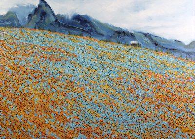 clint-eccher-alpine-flowers