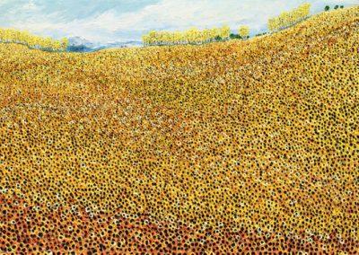 clint-eccher-mountain-sunflowers