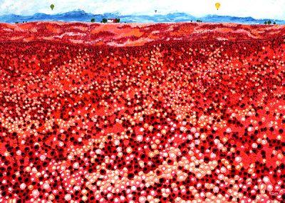 clint-eccher-poppy-field